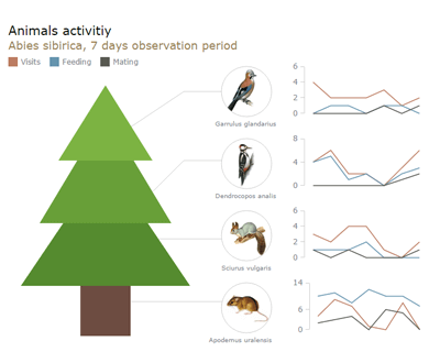 Animals Activity | Graphics | Robust JavaScript/HTML5 charts | AnyChart